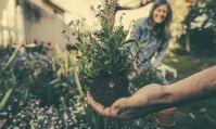 Pourquoi choisir l'aide au jardinage pour son propre jardin ?