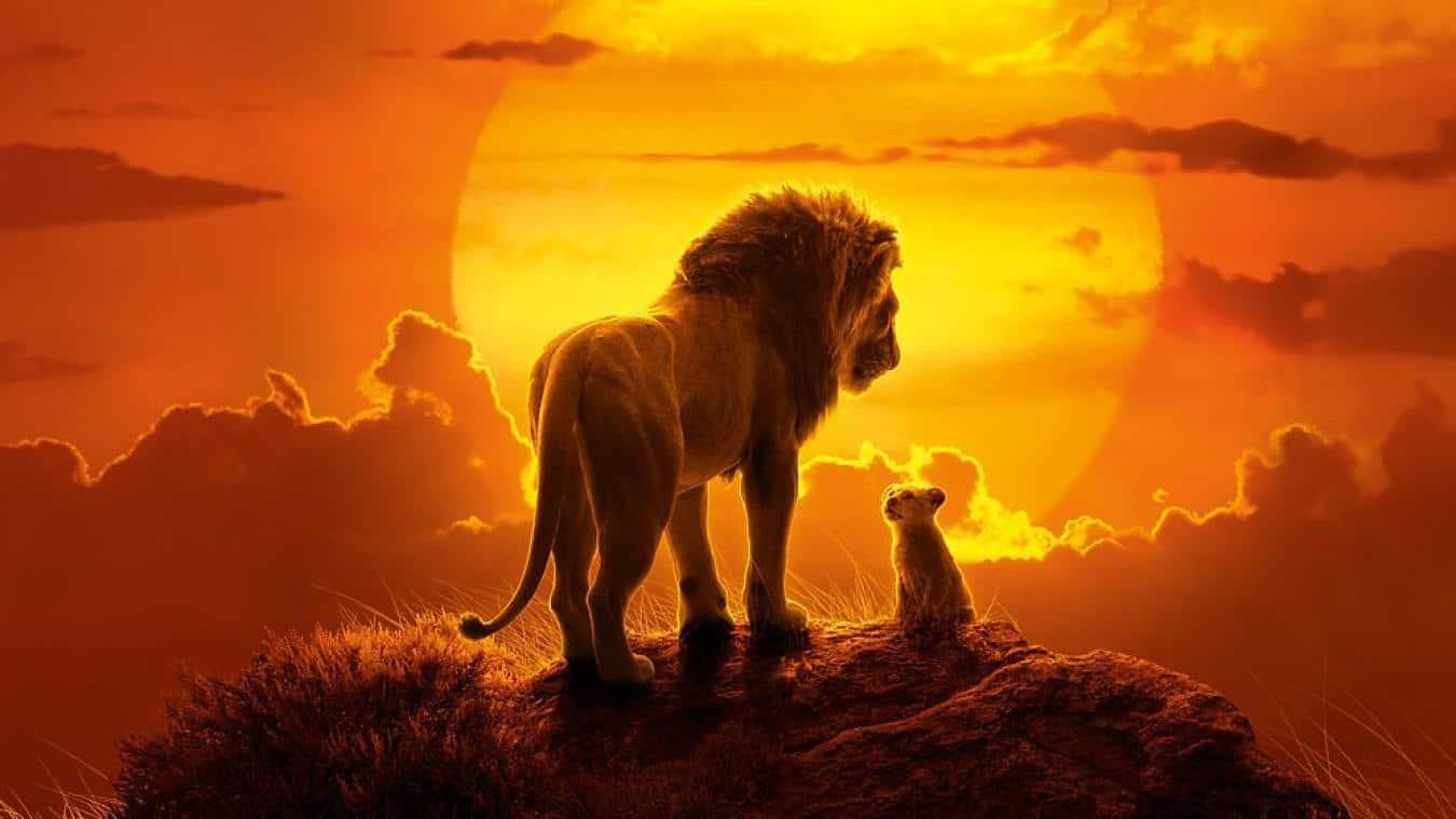 Un Echec Cuisant Pour Le Roi Lion Aux Usa Vis A Vis Des Critiques