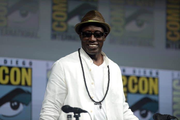 Un célèbre acteur rejoint le casting du film « Un prince à New York 2 »