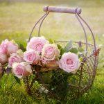 Offrir des roses : couleur, nombre, symbole !