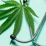 Covid-19 : le cannabis protège-t-il du virus ?