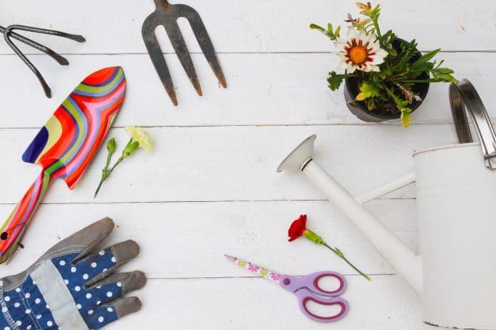Quelques conseils pour l'entretien de votre jardin