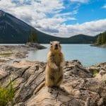 Tourisme au Canada : forces et faiblesses d'une destination qui peine à s'envoler