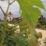 Bordeaux rive gauche : Le Médoc et Les Graves