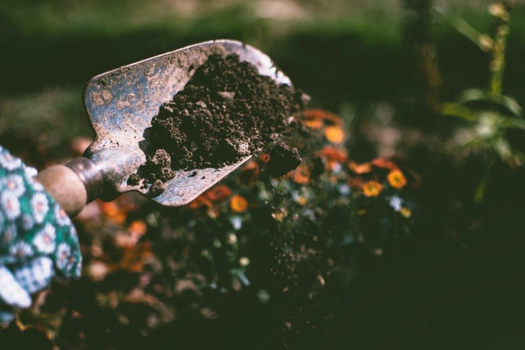 Comment cultiver un jardin ?