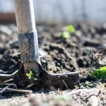 Cultiver son jardin : comment s'y prendre ?