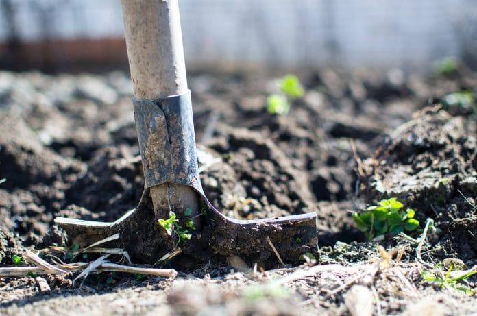 Cultiver son jardin : comment s'y prendre ?
