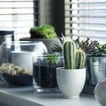 Des astuces pour décorer sa maison sans dépenser des fortunes
