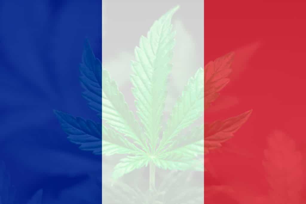 Le statut légal du CBD en France : où en est-il ?