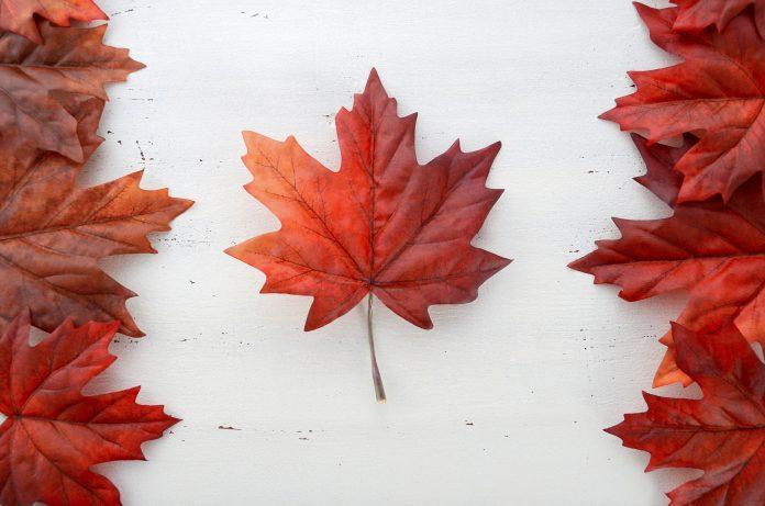 Quelles sont les démarches pour partir au Canada ?