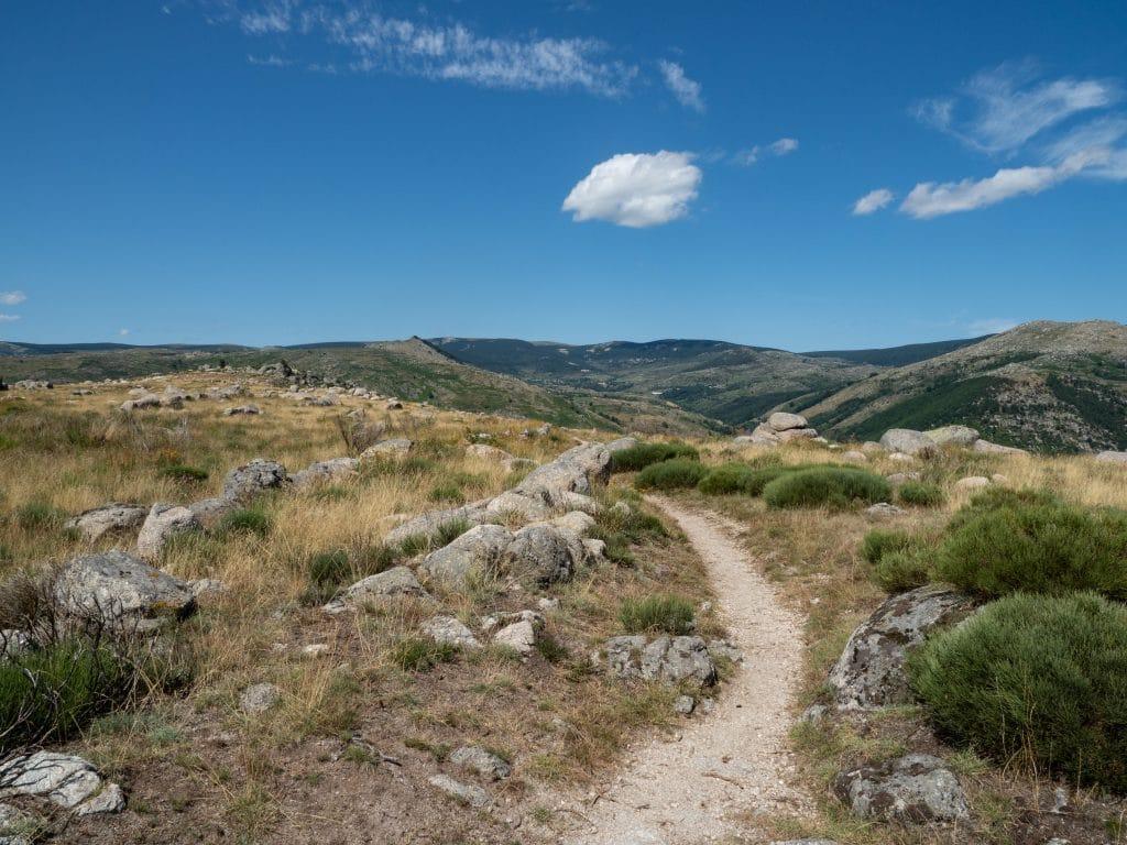 Le Chemin de Stevenson (GR70)