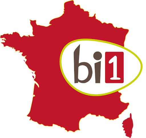 Bi1 Drive
